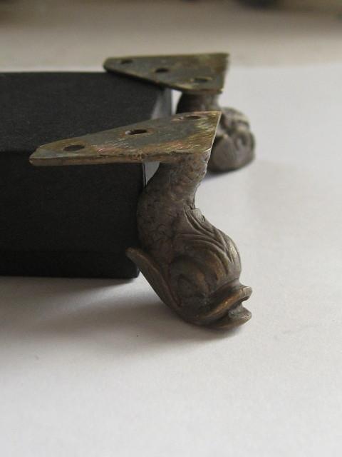 Dolphin feet